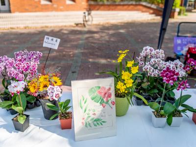 長榮大學蘭花學程蘭花週 展示研發妝品及販售香莢蘭布丁